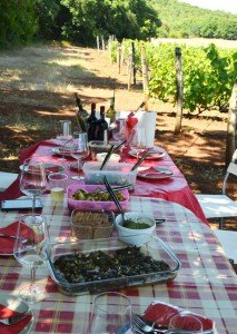 Picnic at Elinos Vineyards in Naoussa