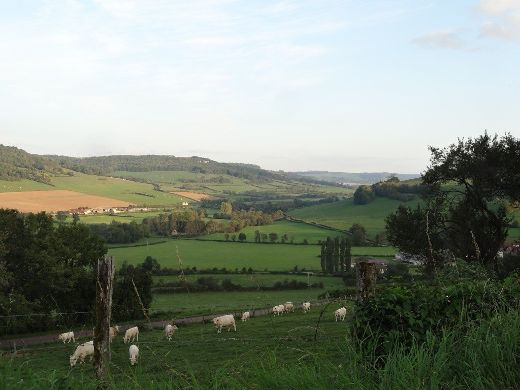 Burgundy Landscape Photo by Maurie O'Connor
