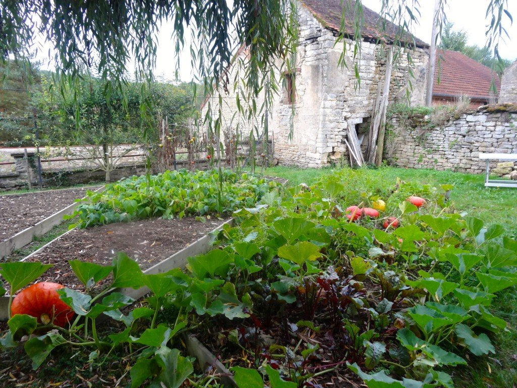 Garden at La Ferme de la Lochère Photo by Maurie O'Connor