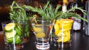 Hendricks Cucumber Martini 4 at SugarBacon with Botanicals