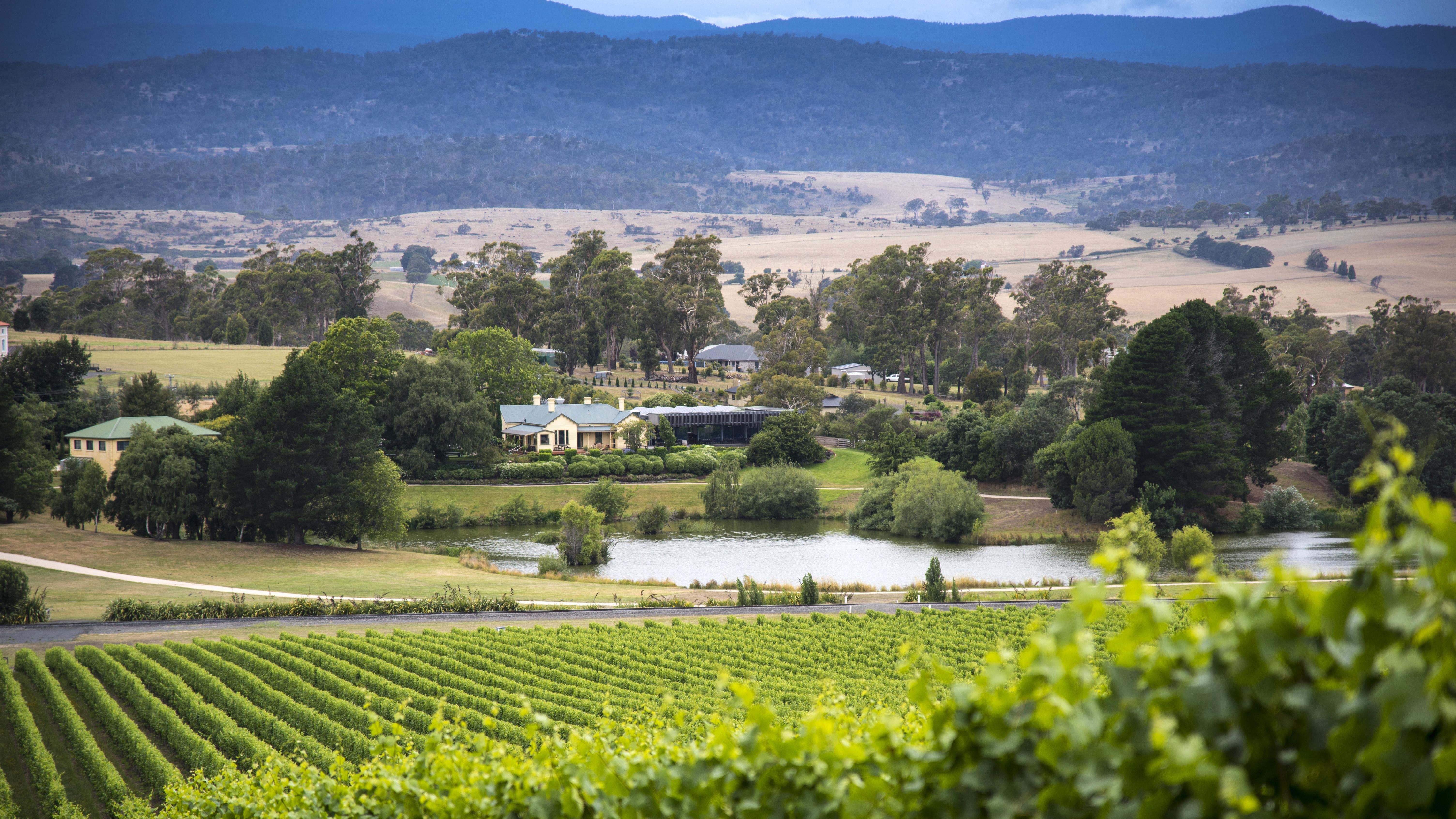 A Taste of Tasmania