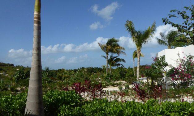 Caribbean: Seeking Culture in All-Inclusive Resorts