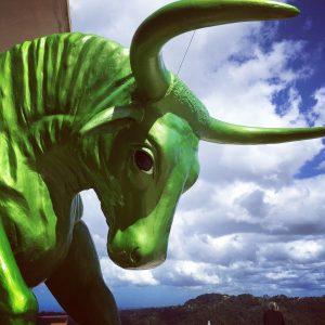 Toro Verde The Green Bull