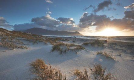 Ancestral Adventure in New Zealand