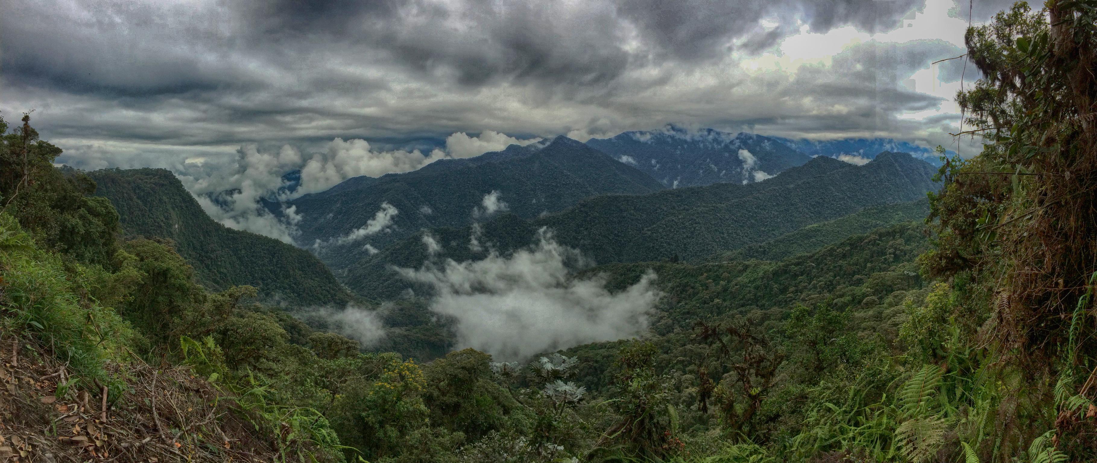 Views from Tandayapa, a bird-watching lodge in the Ecuadorian Andes (c) Tandayapa. FWT Magazine.