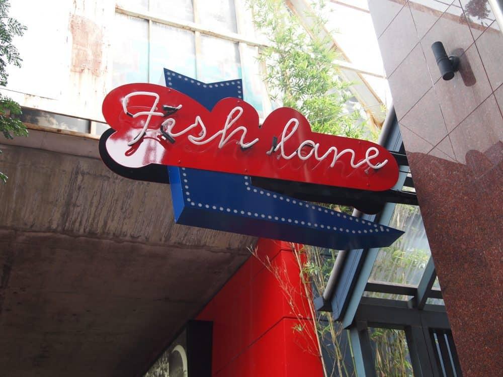 Fish Lane, one of Brisbane's bustling laneways (c) Jacqui Gibson. FWT Magazine.