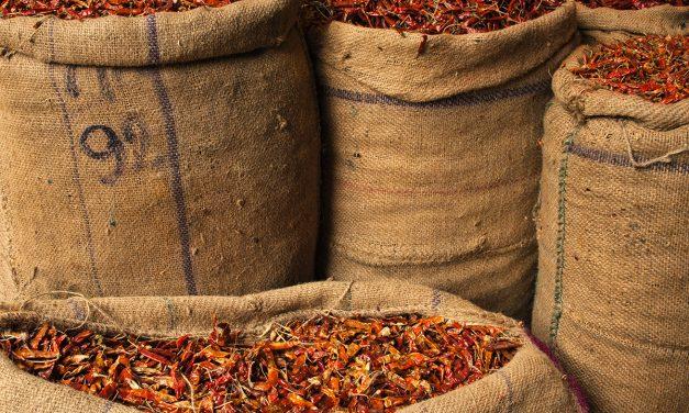 Exploring the Spice Market in Old Delhi