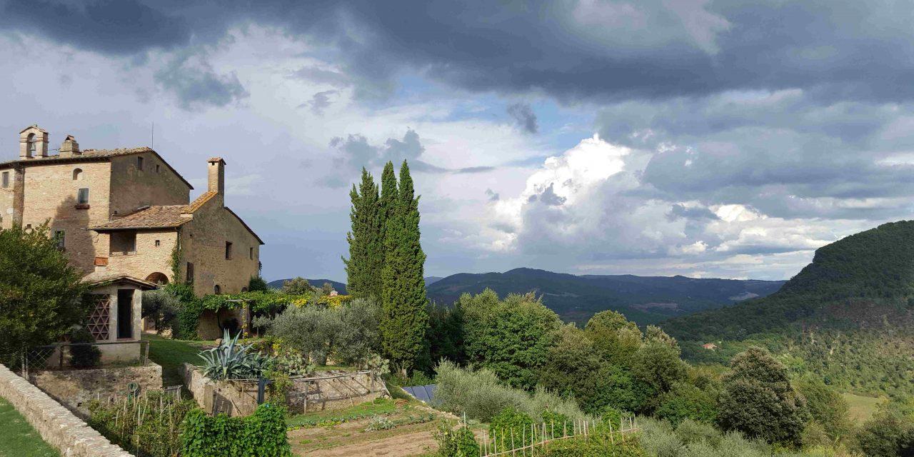 Treasures of Tuscany: Truffles to Tiramisu