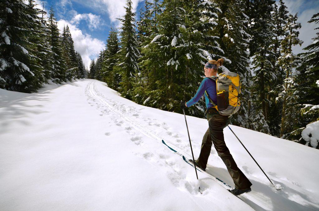 cross country skiing Mount Hood