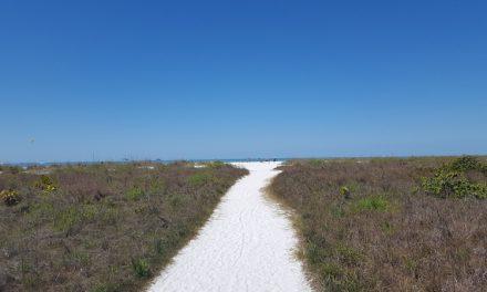 Florida's Paradise Coast: Naples and Marco Island