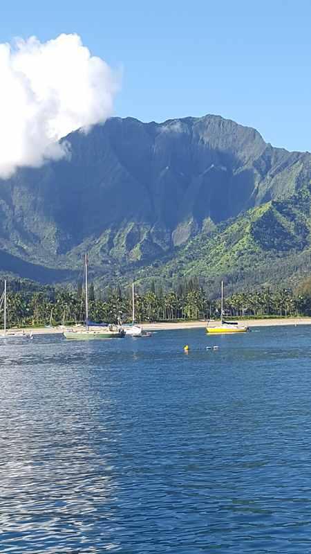 Kauai Seafood Restaurants