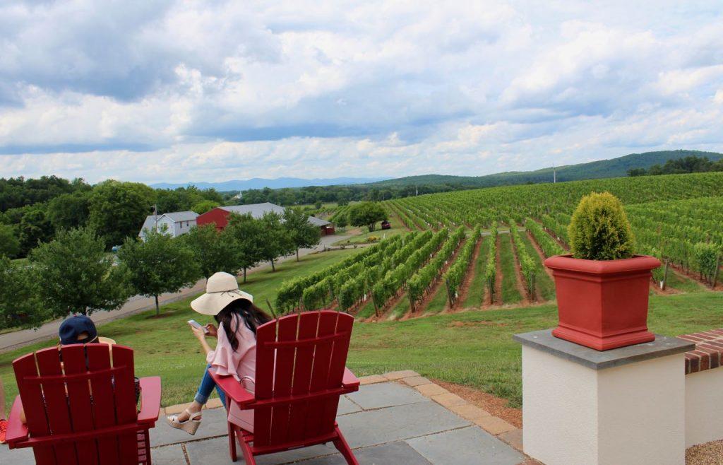 Barboursville Vineyards, Virginia