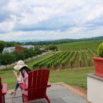 The Surprising Wines of Virginia: Barboursville Vineyards