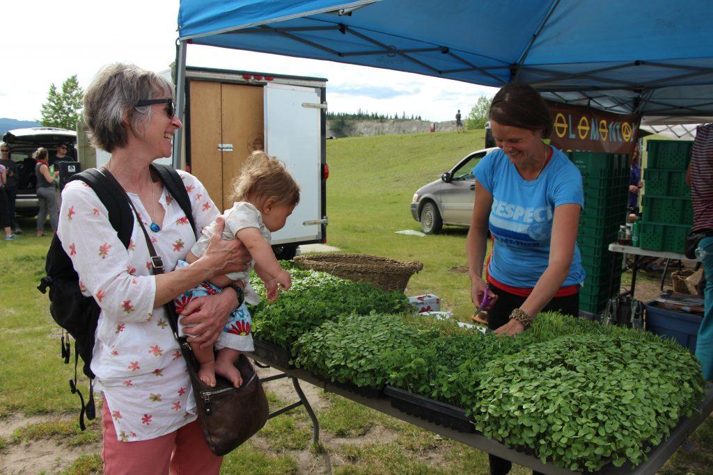 The Elemental Farm stall at Fireweed market © Christine Salins