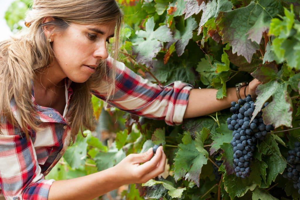 Winemaker Clara Canals Sotillo of Campo Vieja; (c) Campo Vieja. FWT Magazine.