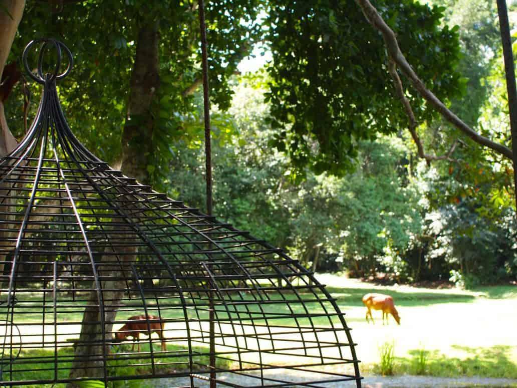 Lunuganga gardens and wildlife. FWT Magazine.