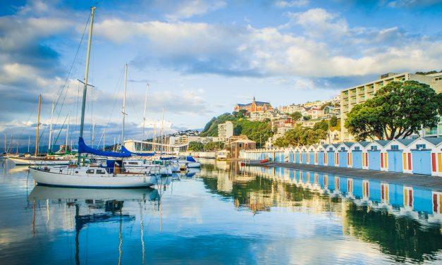 Cuba Street Cookbook Tells Tasty Tales from Wellington, New Zealand