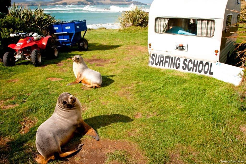 Porpoise Bay, Southland. New Zealand. FWT Magazine.