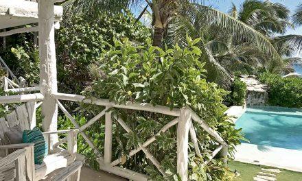 Experience Eco-Friendly Luxury in Tulum, Mexico