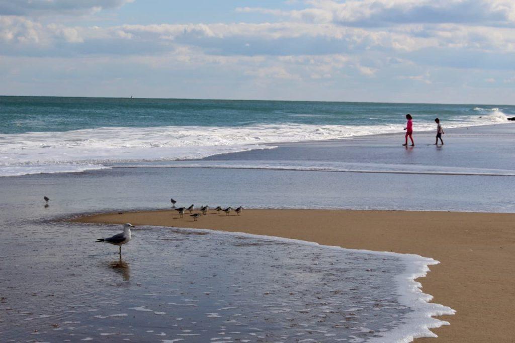 Dewey Beach, Delaware. FWT Magazine.