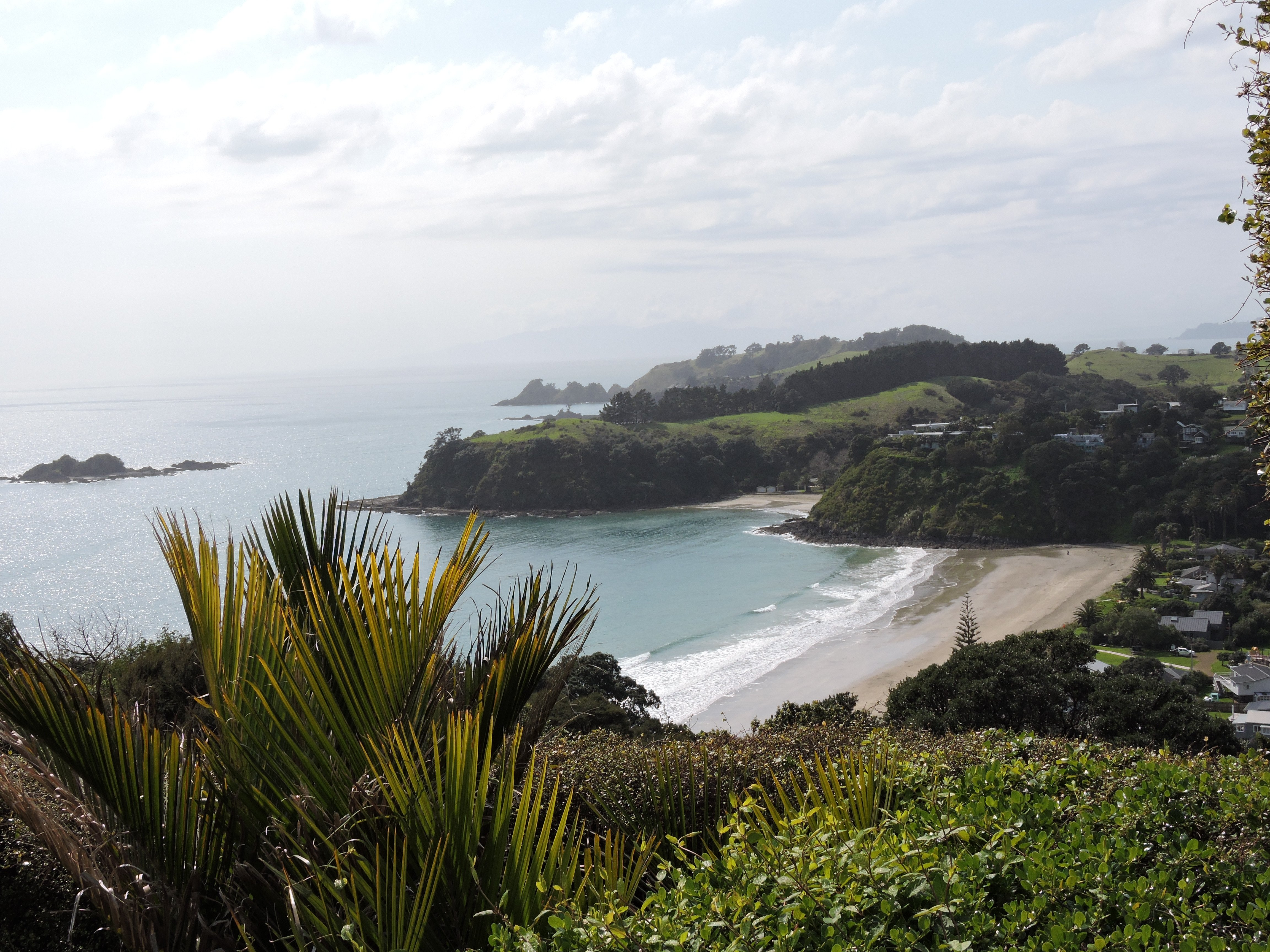 Image of beach on Waiheke Island