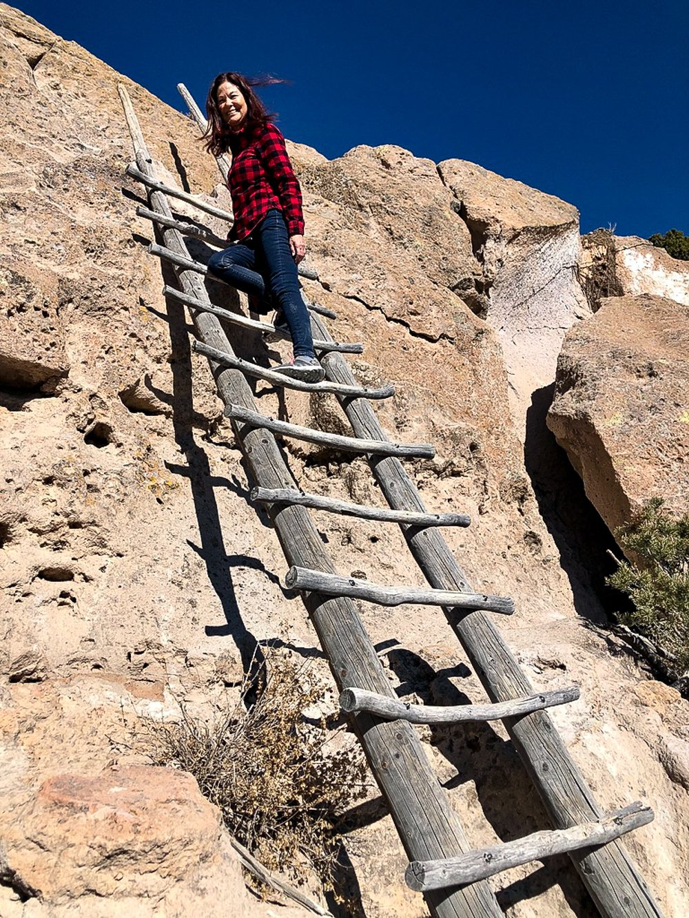 Ladder to the mesa top, hiking in Bandelier National Monument