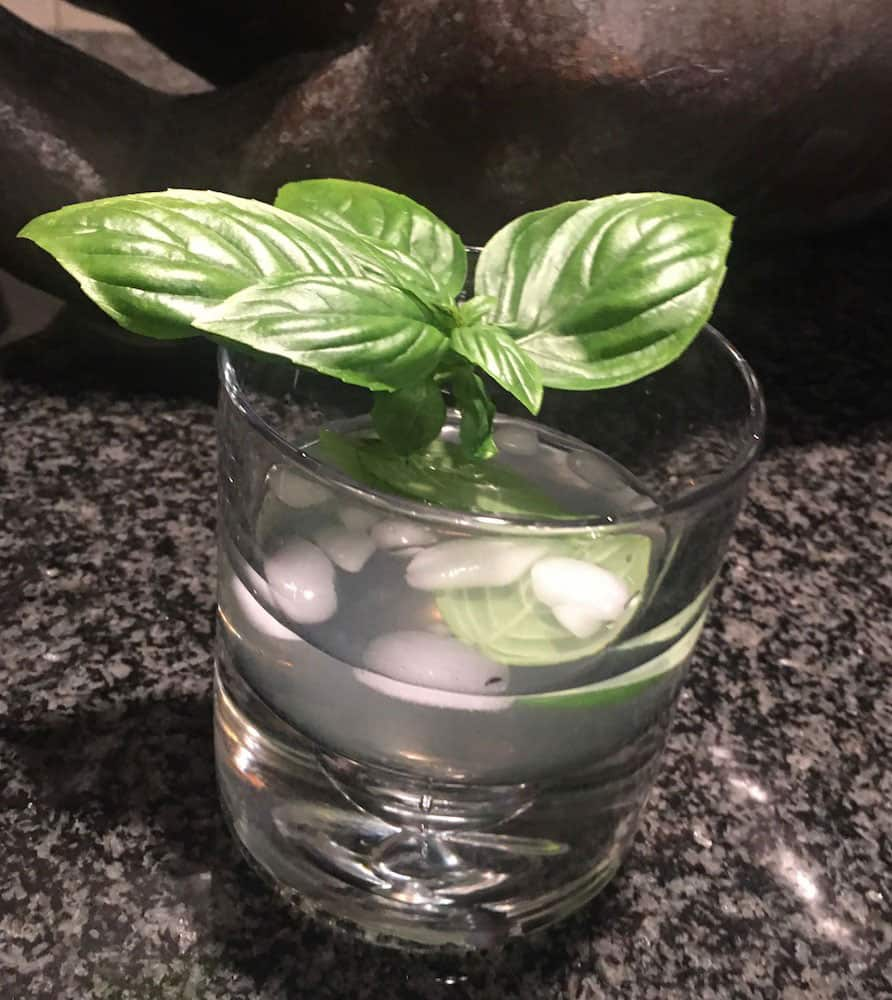 Basil Vodka Chiller