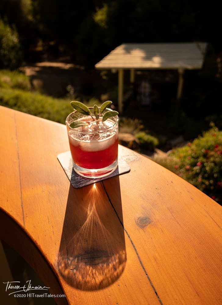 Cranberry Shrub Whiskey Drink