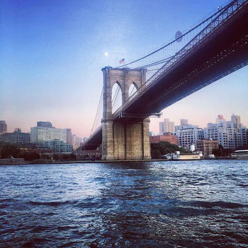 New York Judi Cohen