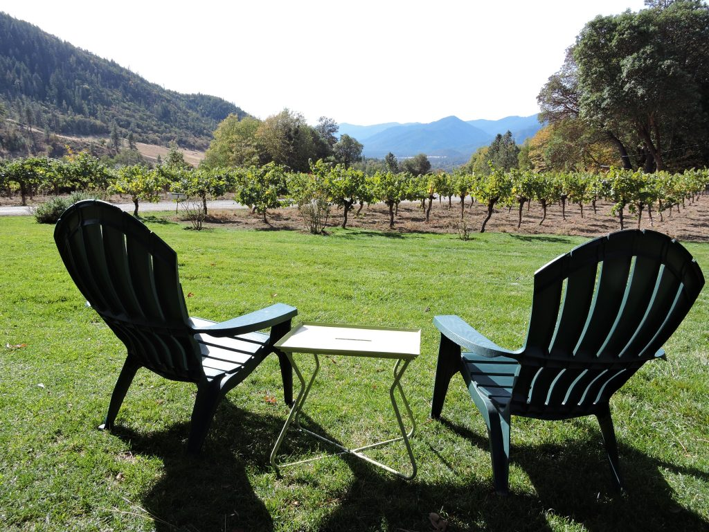 View of vineyards and mountains from the grassy spot at Wooldridge Winery