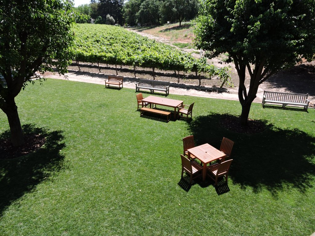 View of Bogle picnic grounds