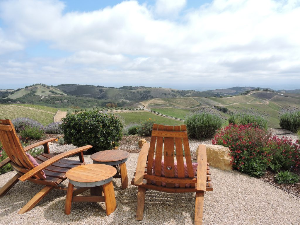 View of vineyards from DAOU